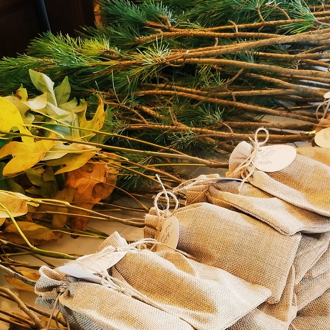 tree seedlings decoratively wrapped in burlap