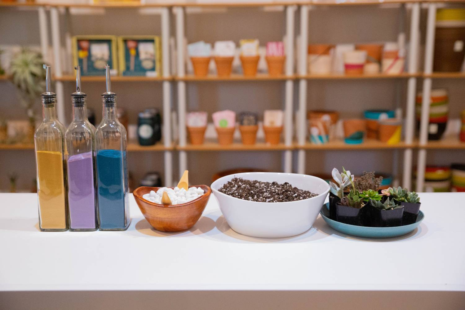 On a white table sits a tray of succulents, a bowl of potting mix, a bowl of decorative rocks, and several glass jars of colorful sand. Behind it all are shelves of colorful products for sale.