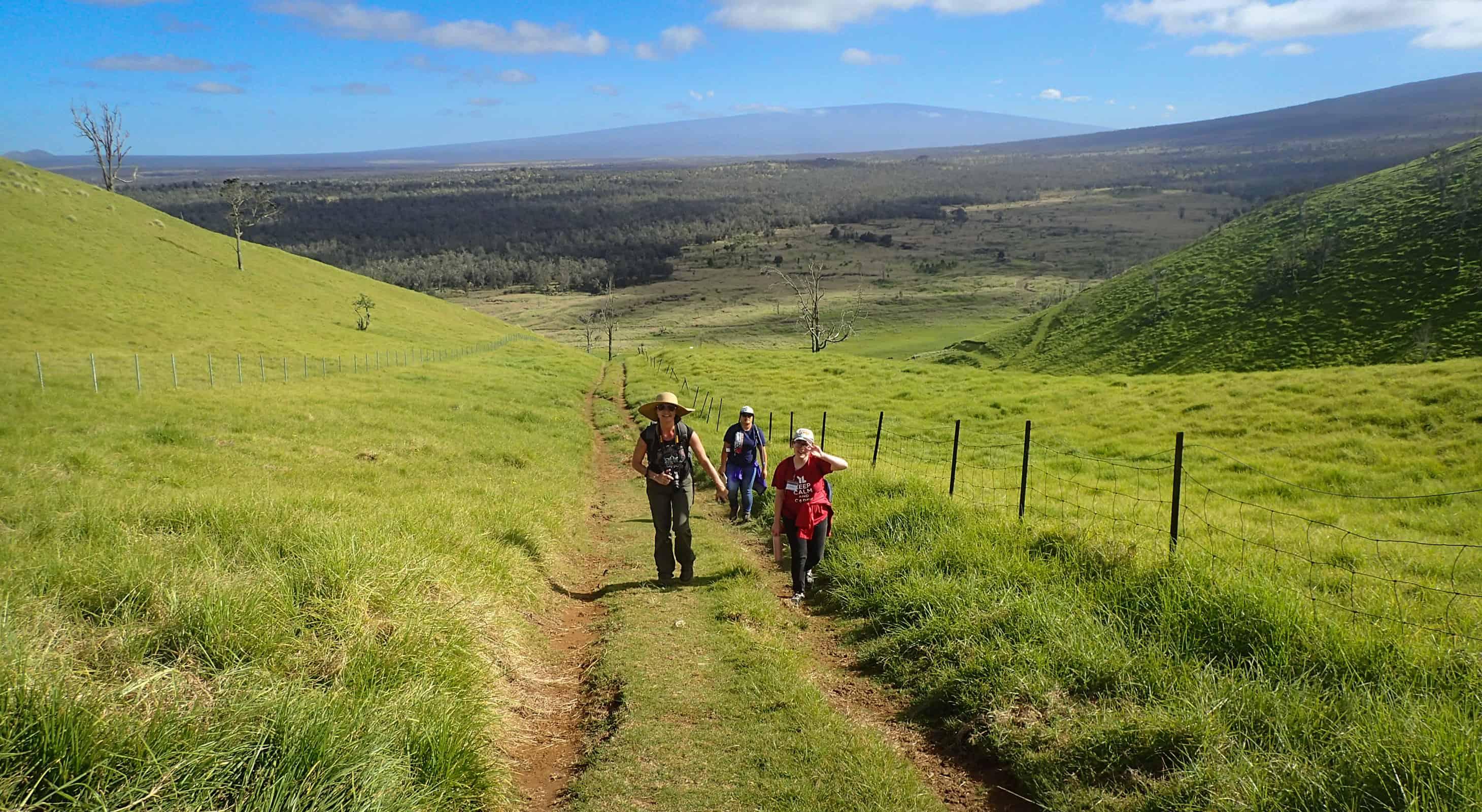 A small group walking up the road to Puʻuwaʻawaʻa