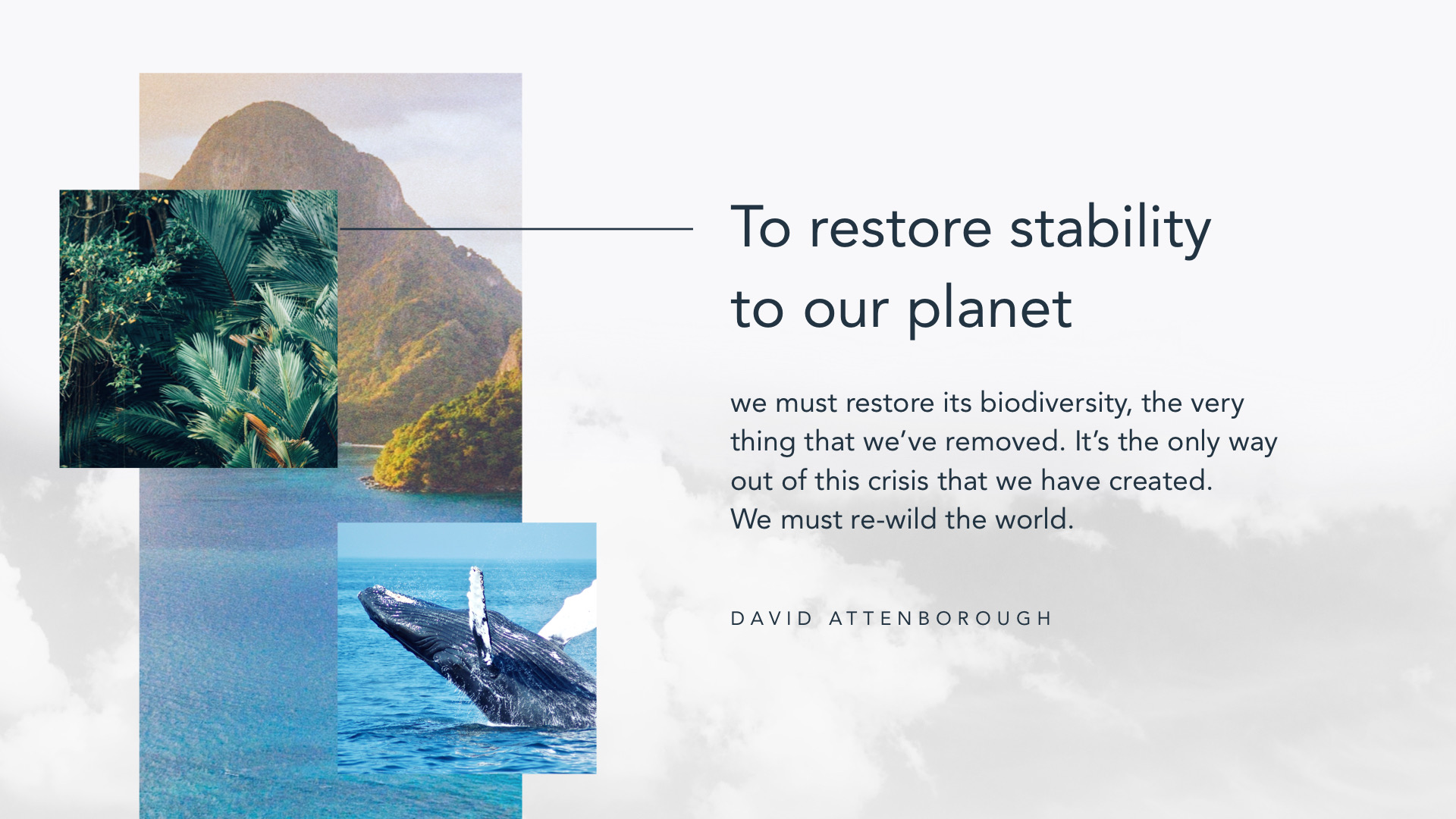 David Attenborough is teaching us how to live more sustainably