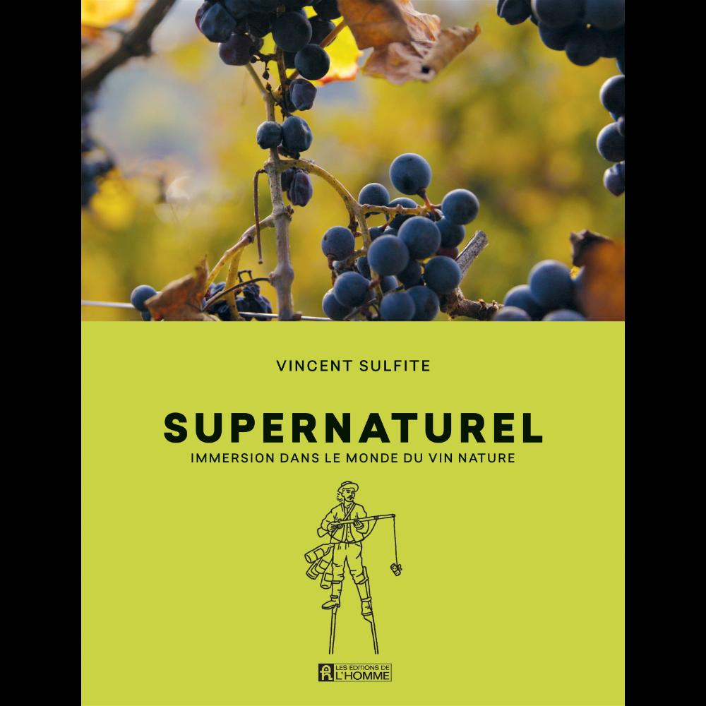 Supernaturel, Vincent Sulfite