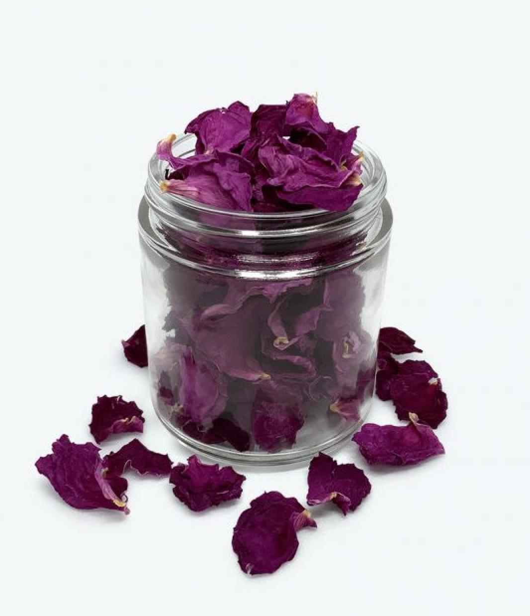 Pétales de rose, Rose des Champs