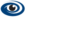 Immersion Data Solutions logo
