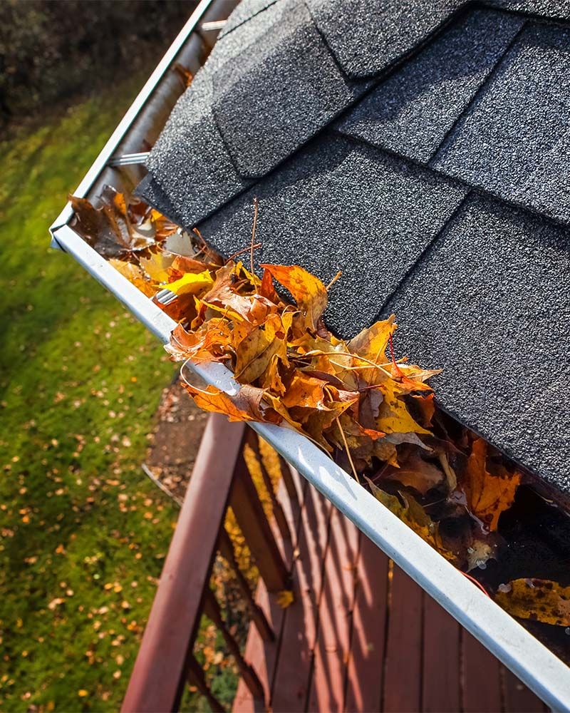 Gutter Cleaning, Gold Coast