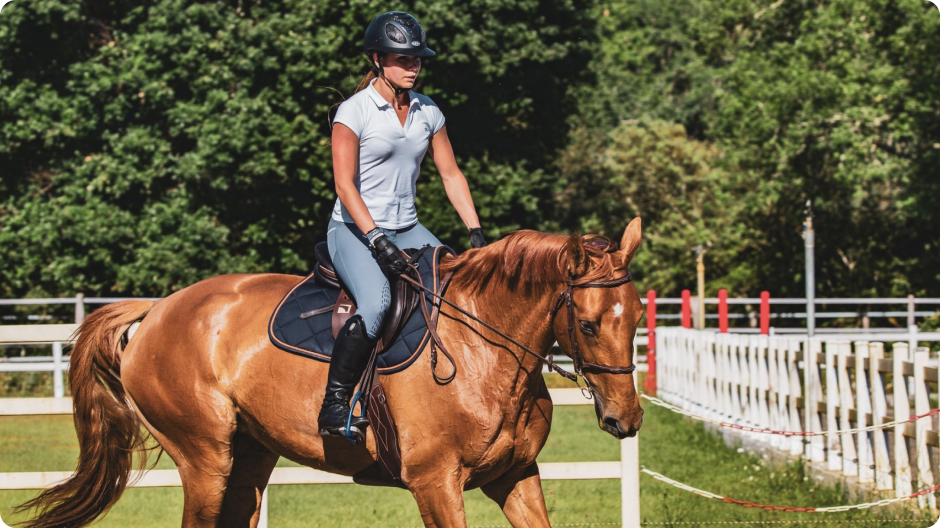 A female rider on her horse
