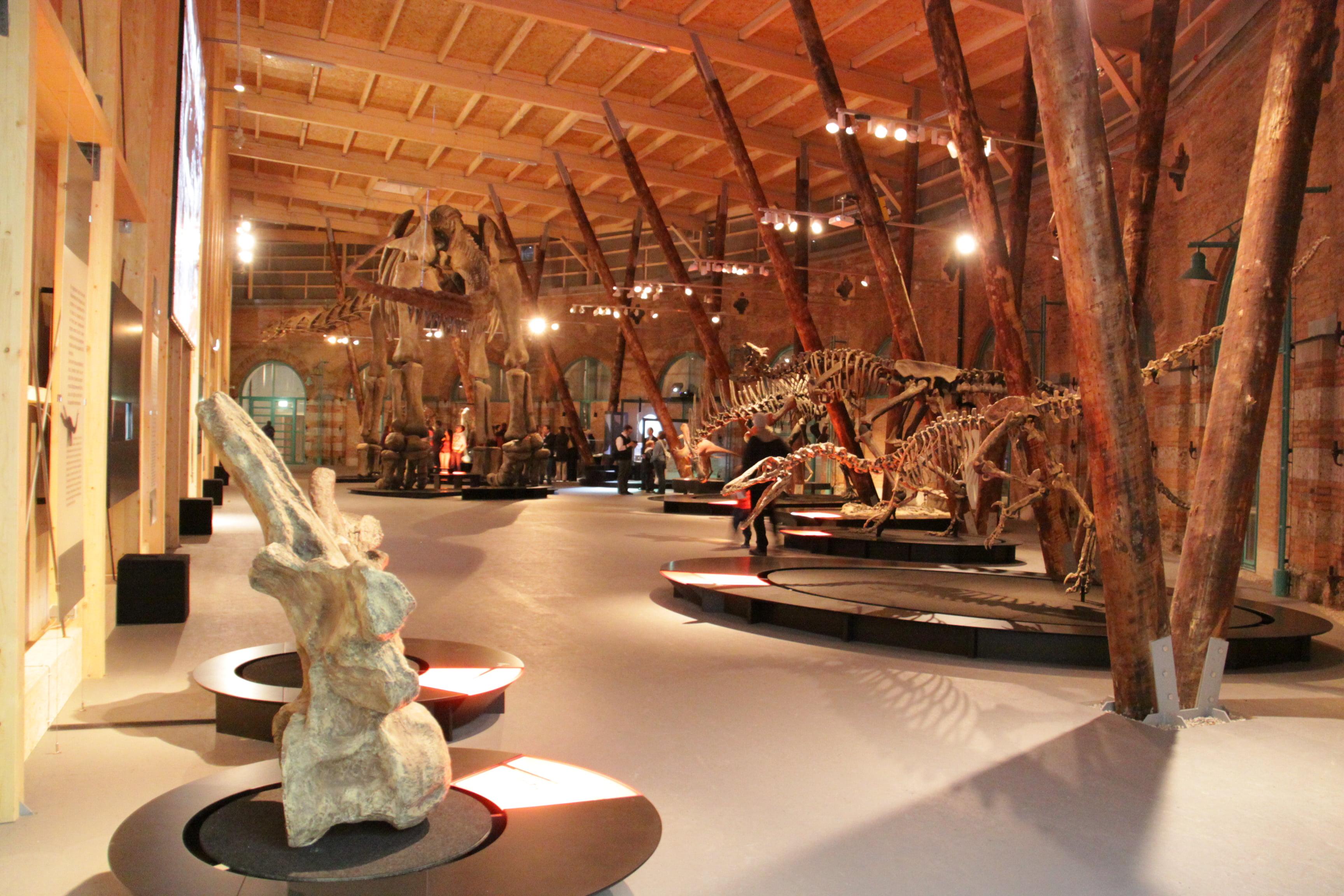 Dinohalle Lokschuppen Rosenheim Innen