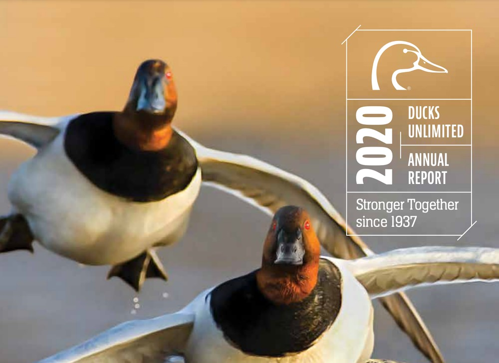 Ducks Unlimited annual report example