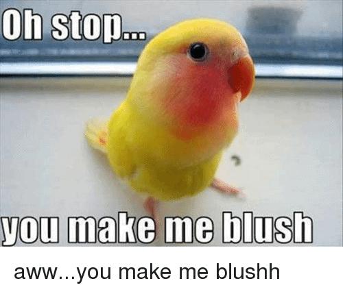 Bird blushing meme