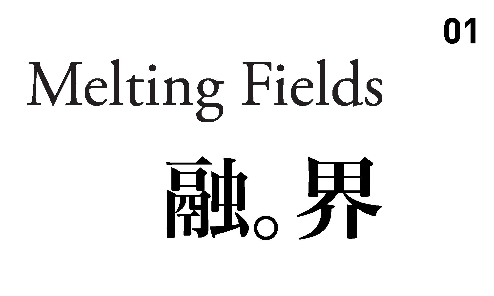 Melting Fields 01