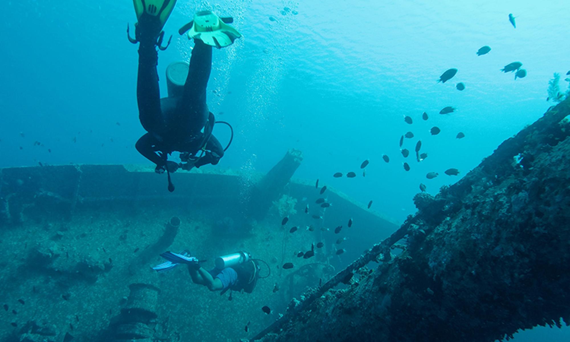 Kalliopi Dive College Courses