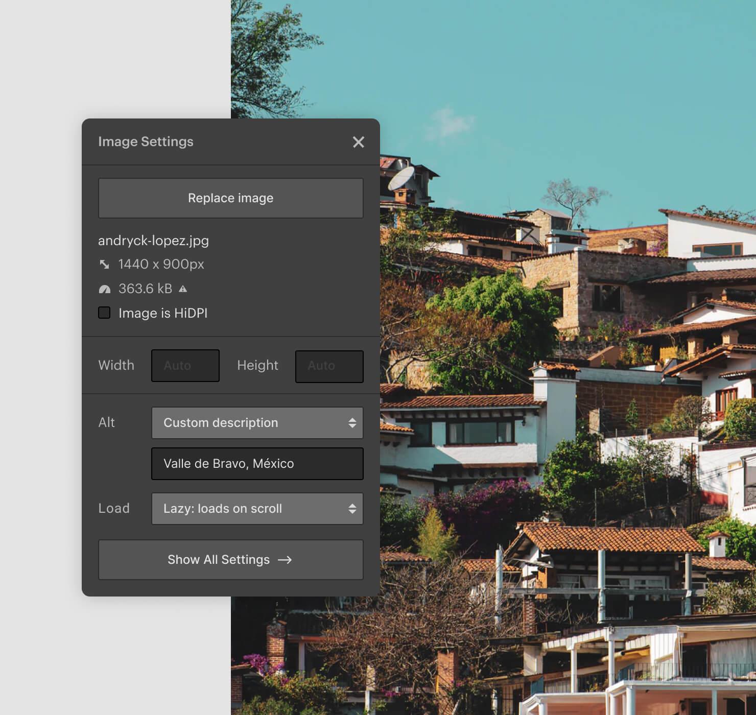 Designer UI of image alt tag settings