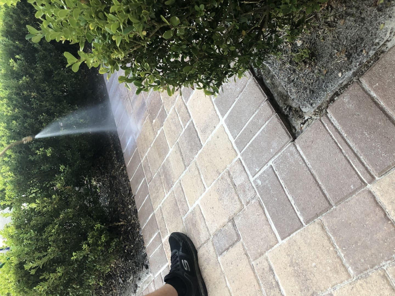washing pavement paver stripping
