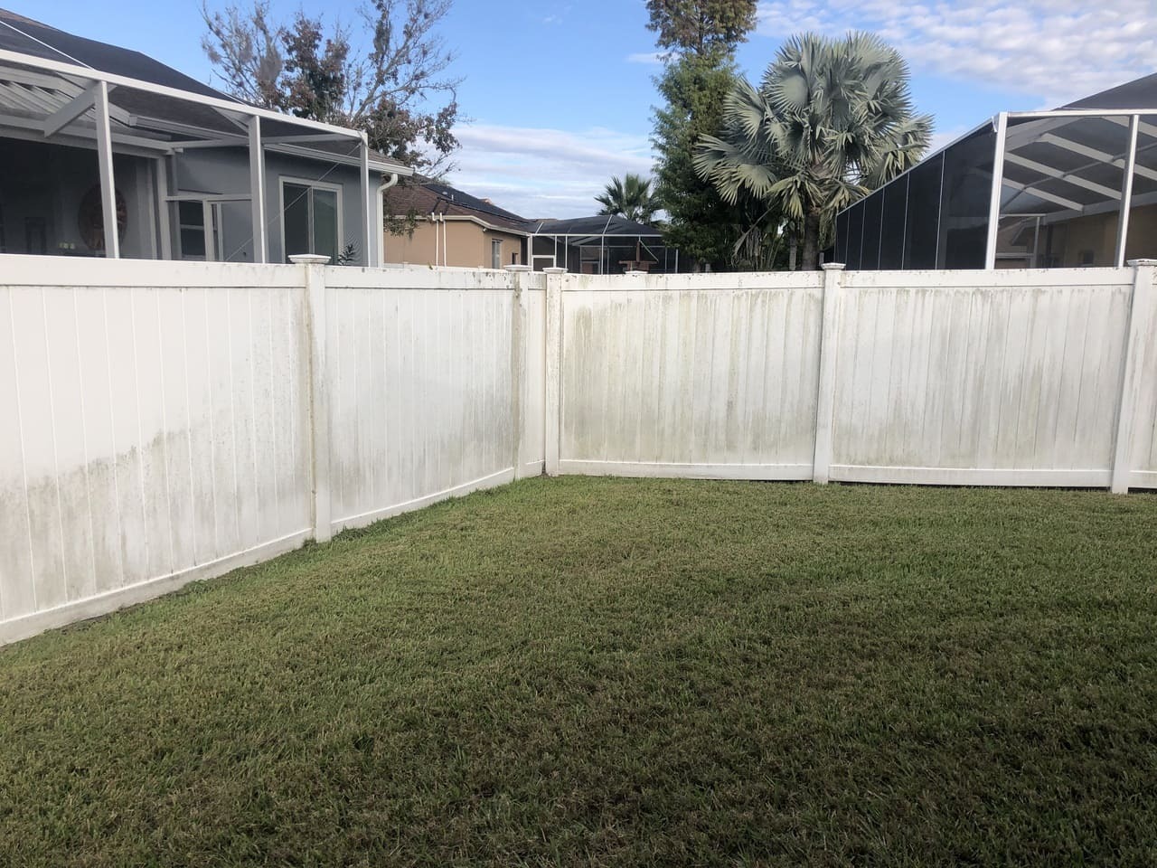 fence yard before  paver stripping