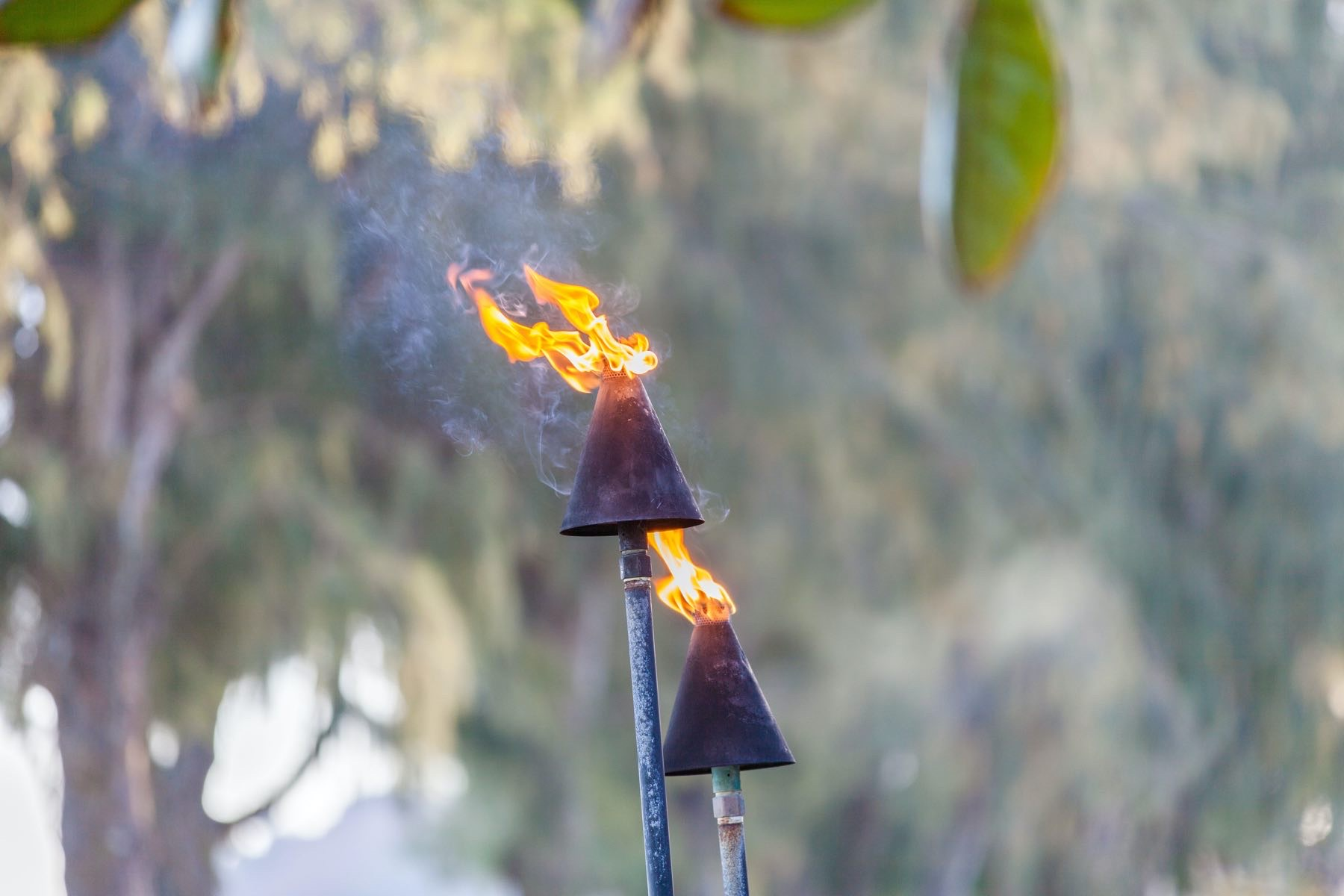 Pitta is the fire that burns in all of us, like Tiki Torches in Hawaii.