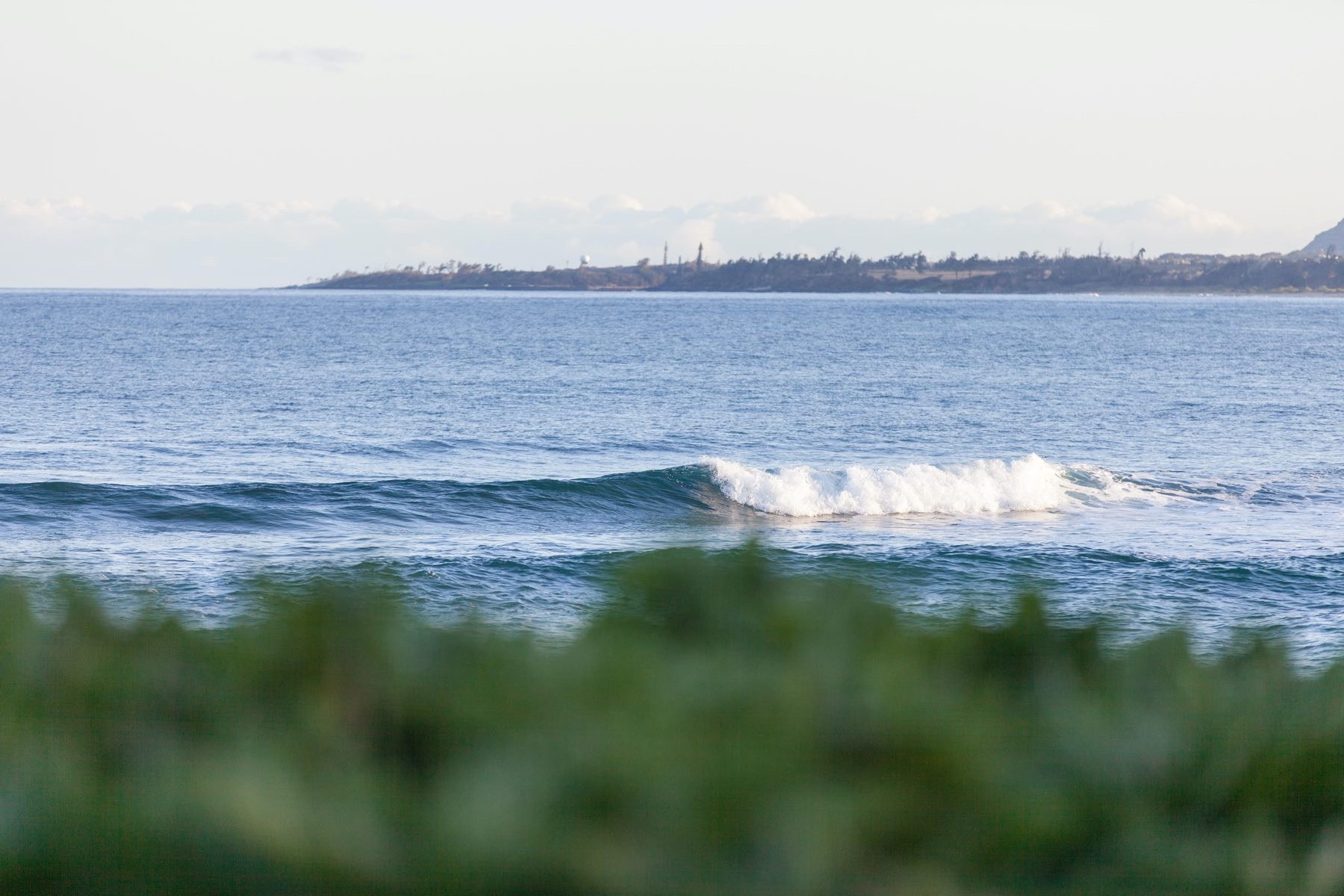 Kauai Ocean & Land