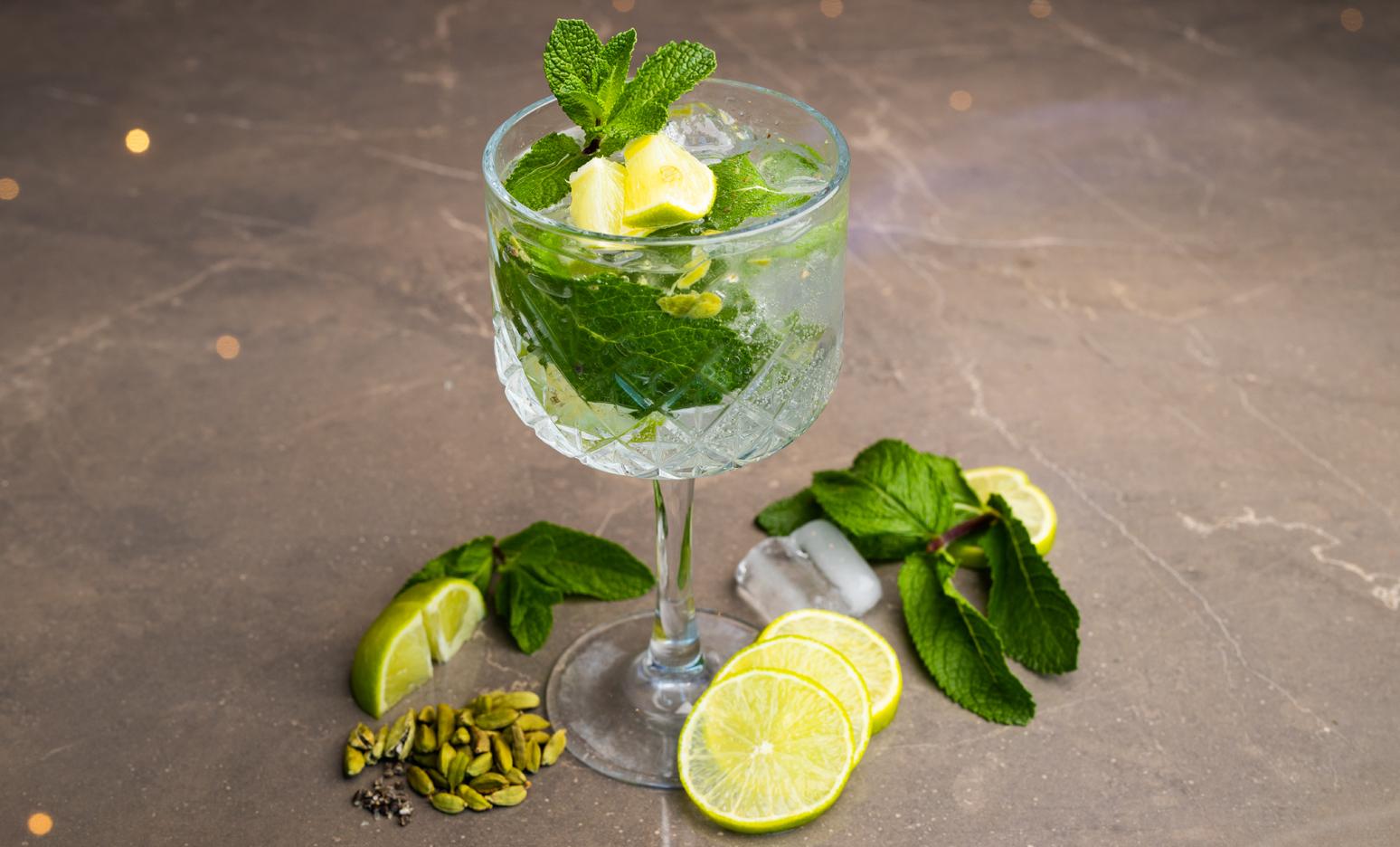 Classic Gin-Tonic