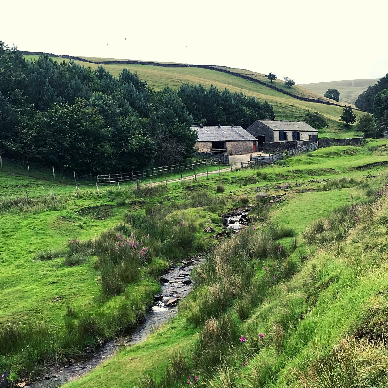 Picturesque view of a valley near Clough House