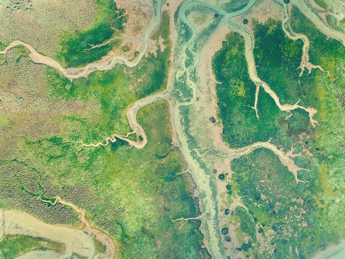 FedUp Foods aerial image of Earth
