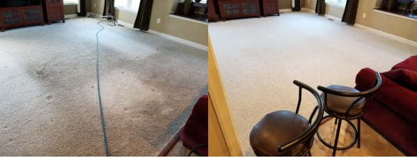 Carpet Cleaning Crofton Maryland