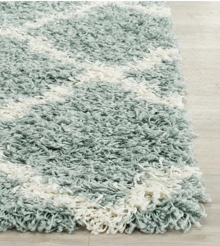 Shag Area Rug Cleaning Baltimore Annapolis Maryland
