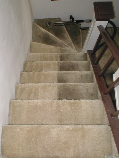 Carpet Cleaning Severn Maryland