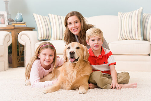 Crownsville Maryland Carpet Cleaning