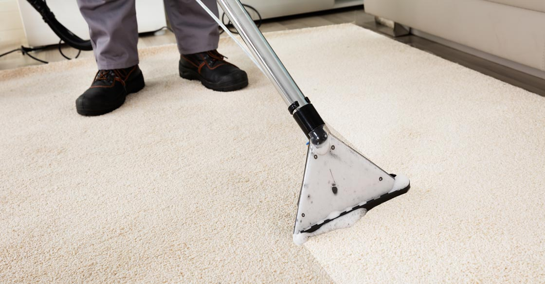 Professional Carpet Cleaning Edgewater Maryland