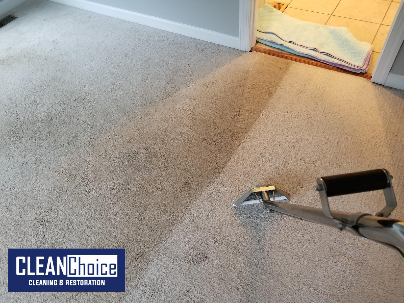 Professional Carpet Cleaning Glen Burnie Maryland