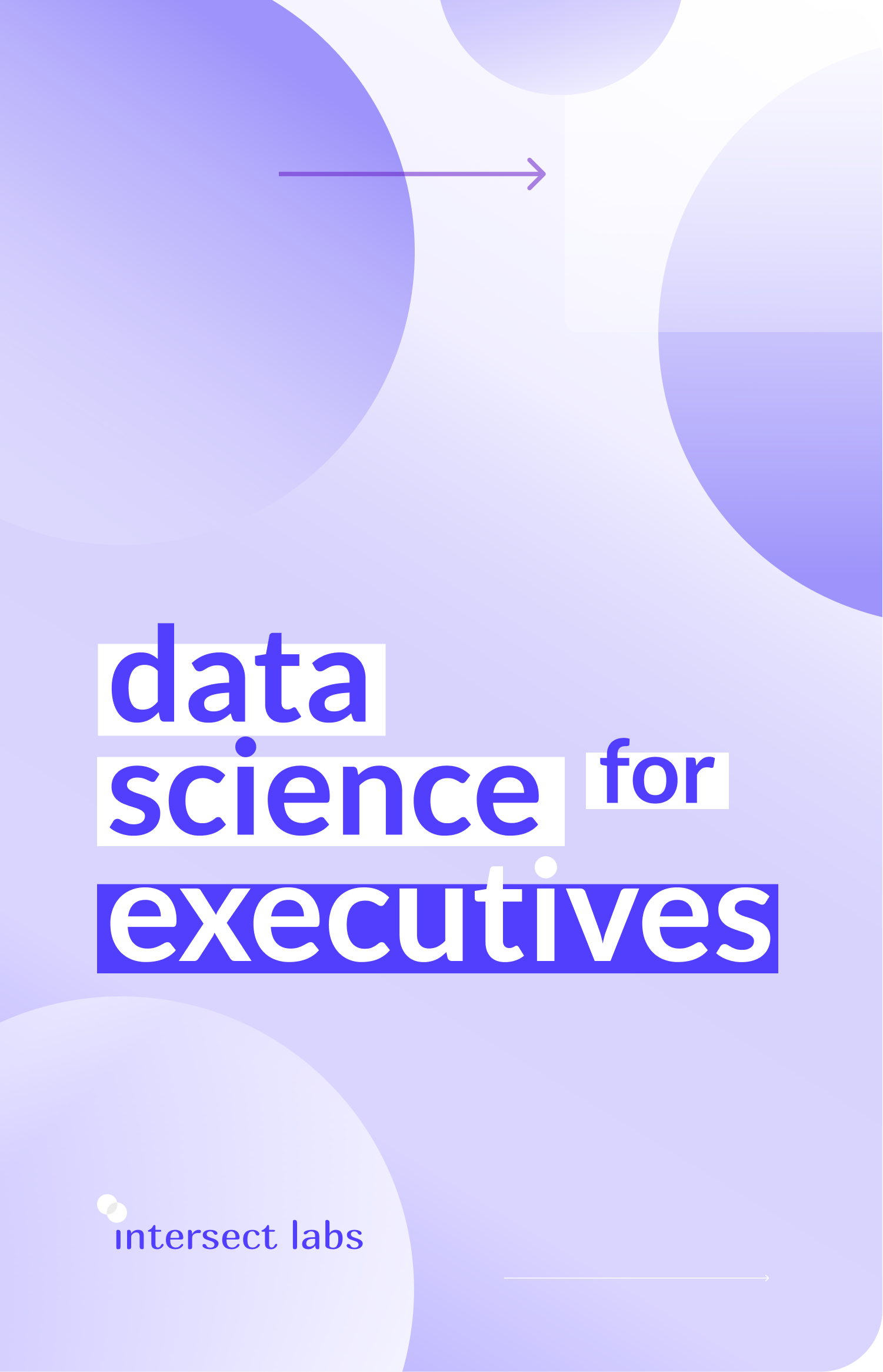 "A book cover in purple and white design, named ""data science for executives"""