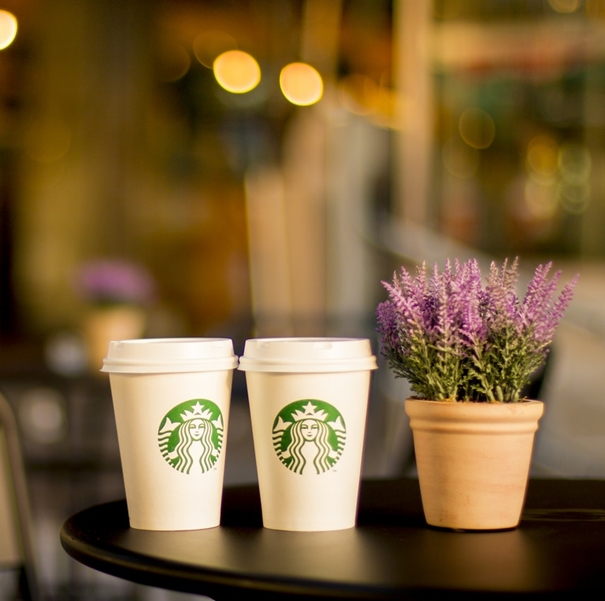 Two Starbucks cups on a table, next to a small plant.