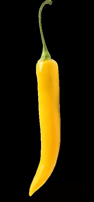 Peperoncini Gelb