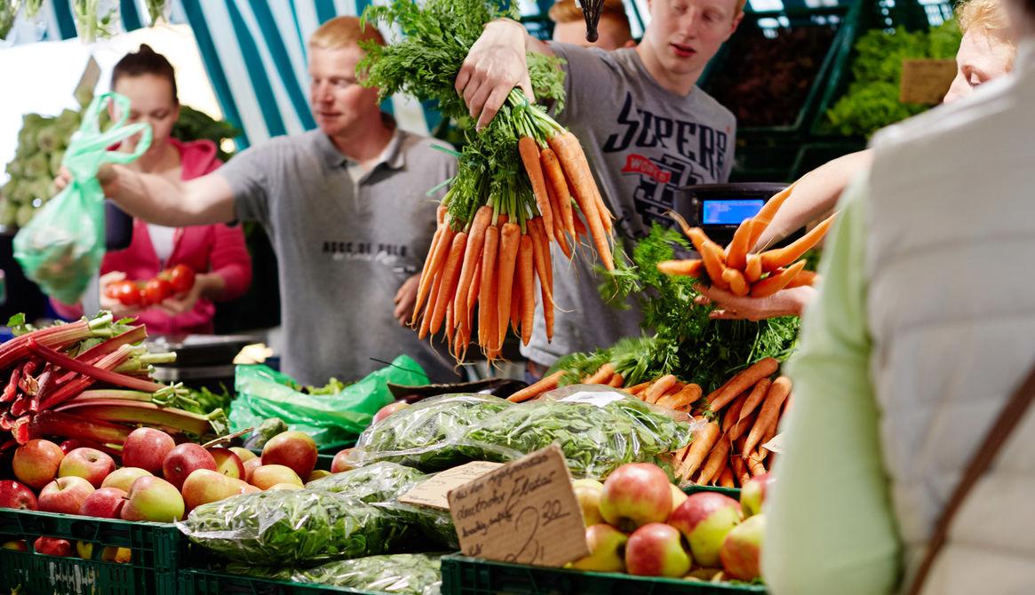 Gemüsebauer Porten