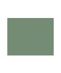 olivia green camping logo