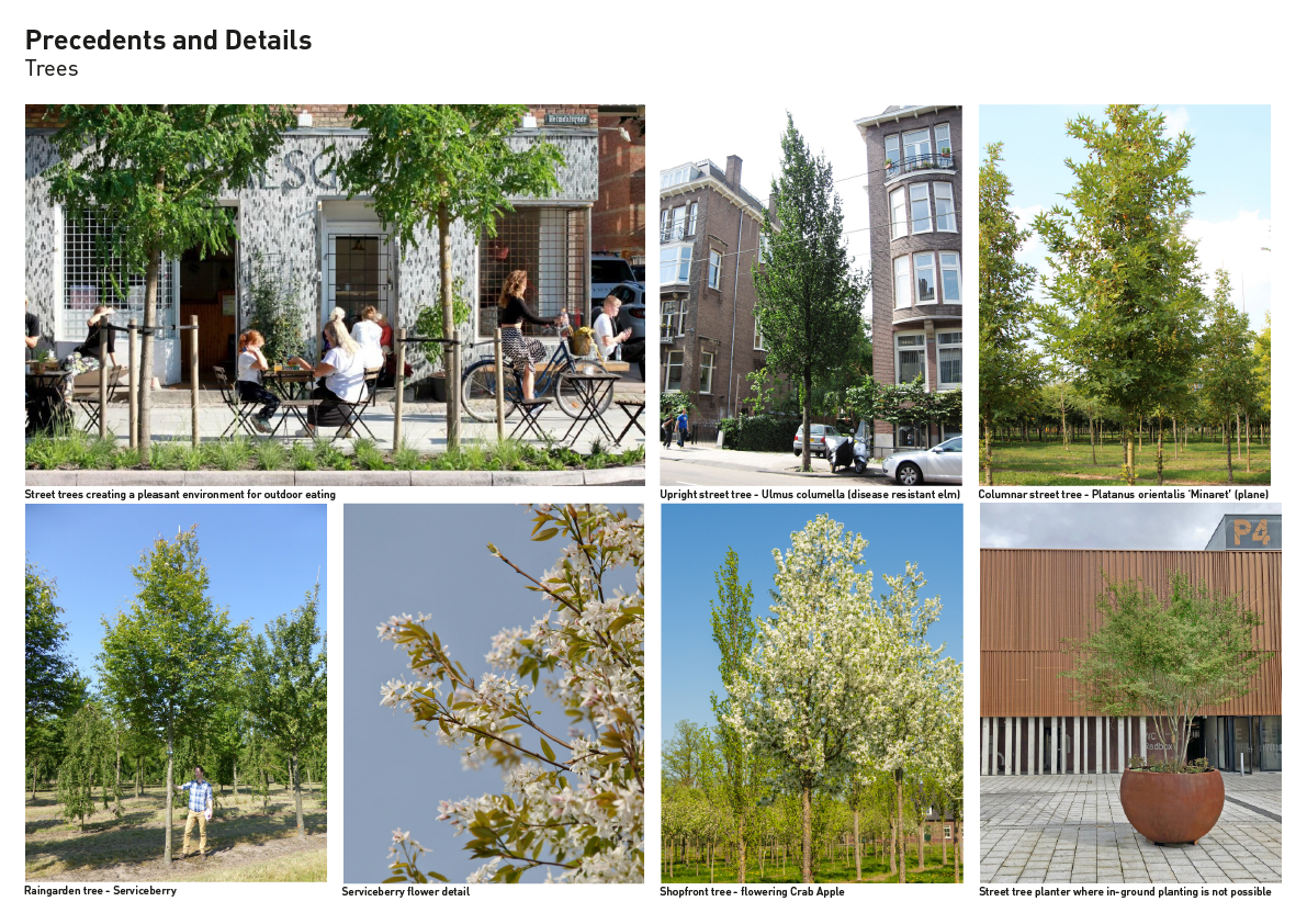 Trees precedents