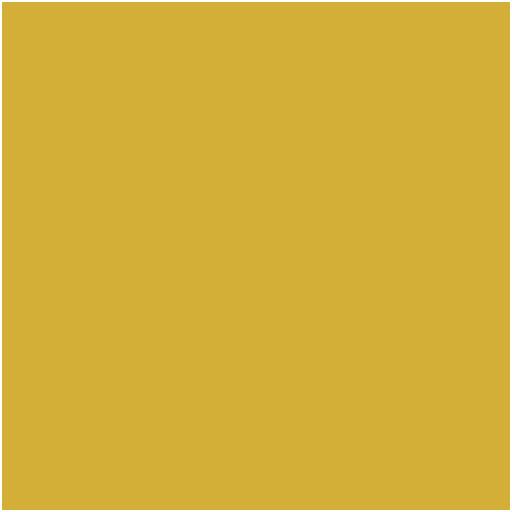 Instagram logo for the site