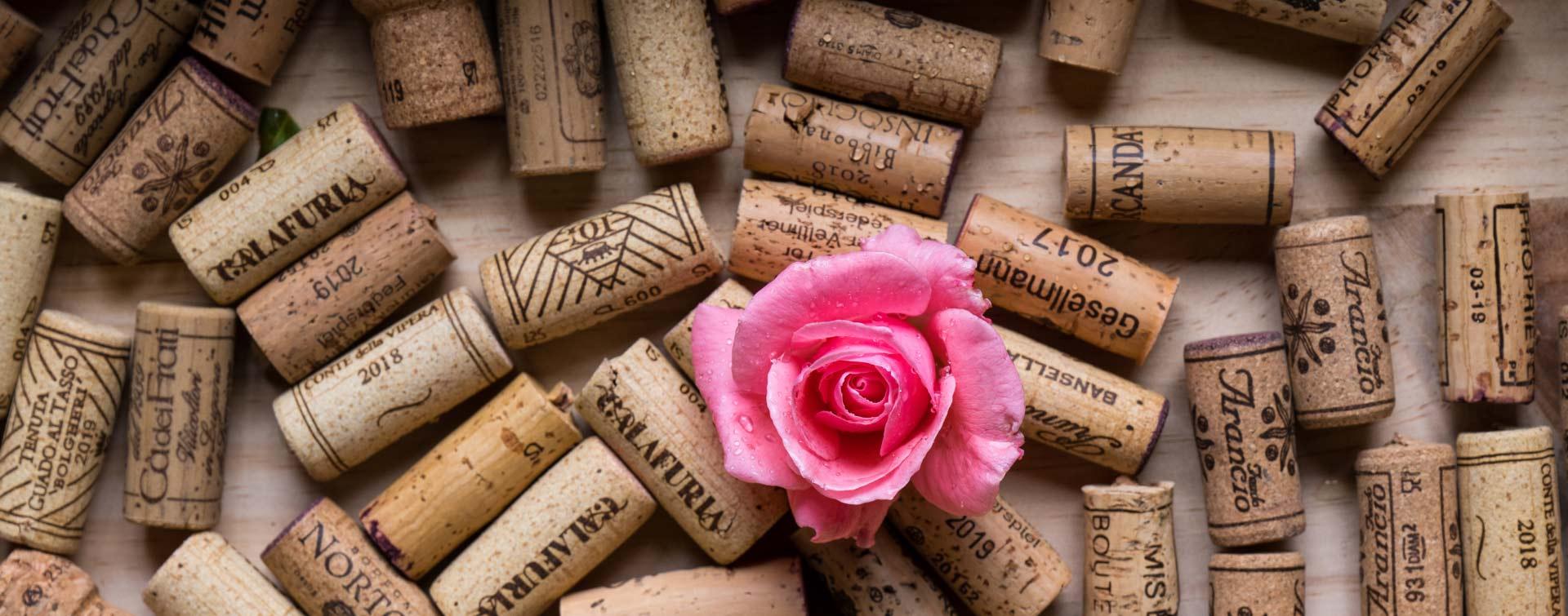 Eine rosa Blume vor mehreren Weinkorken.