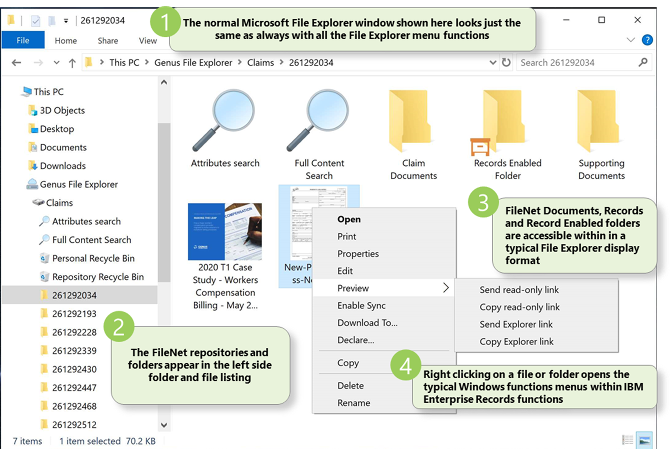 Screenshot of Genus FileExplorer for FileNet with comments.