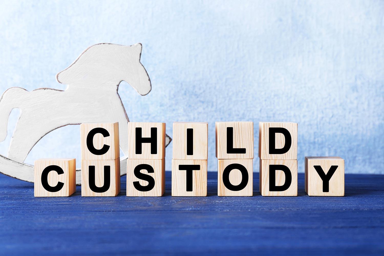 child custody log