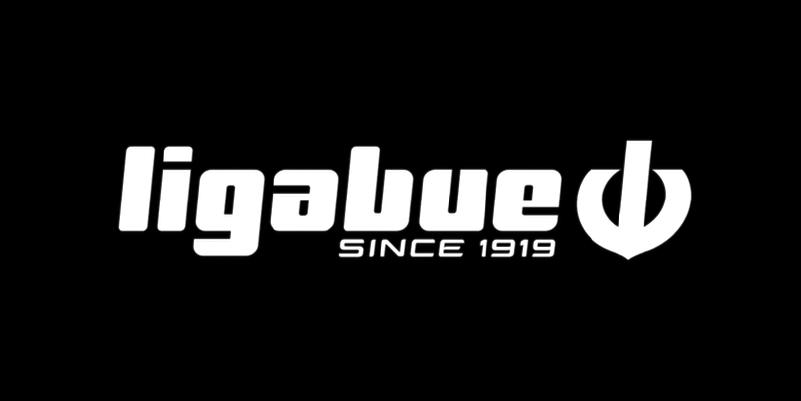 LigaBue logo