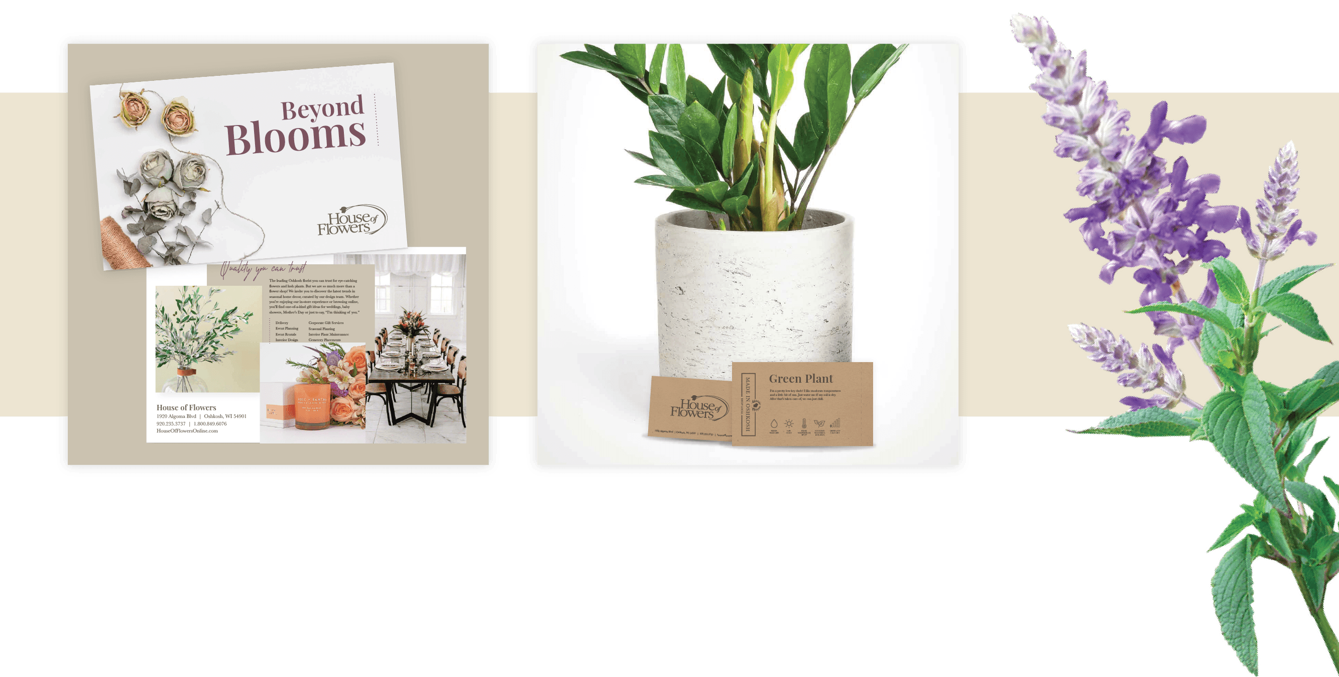 Collage: House of Flower's postcard, plant care cards, and flowers.