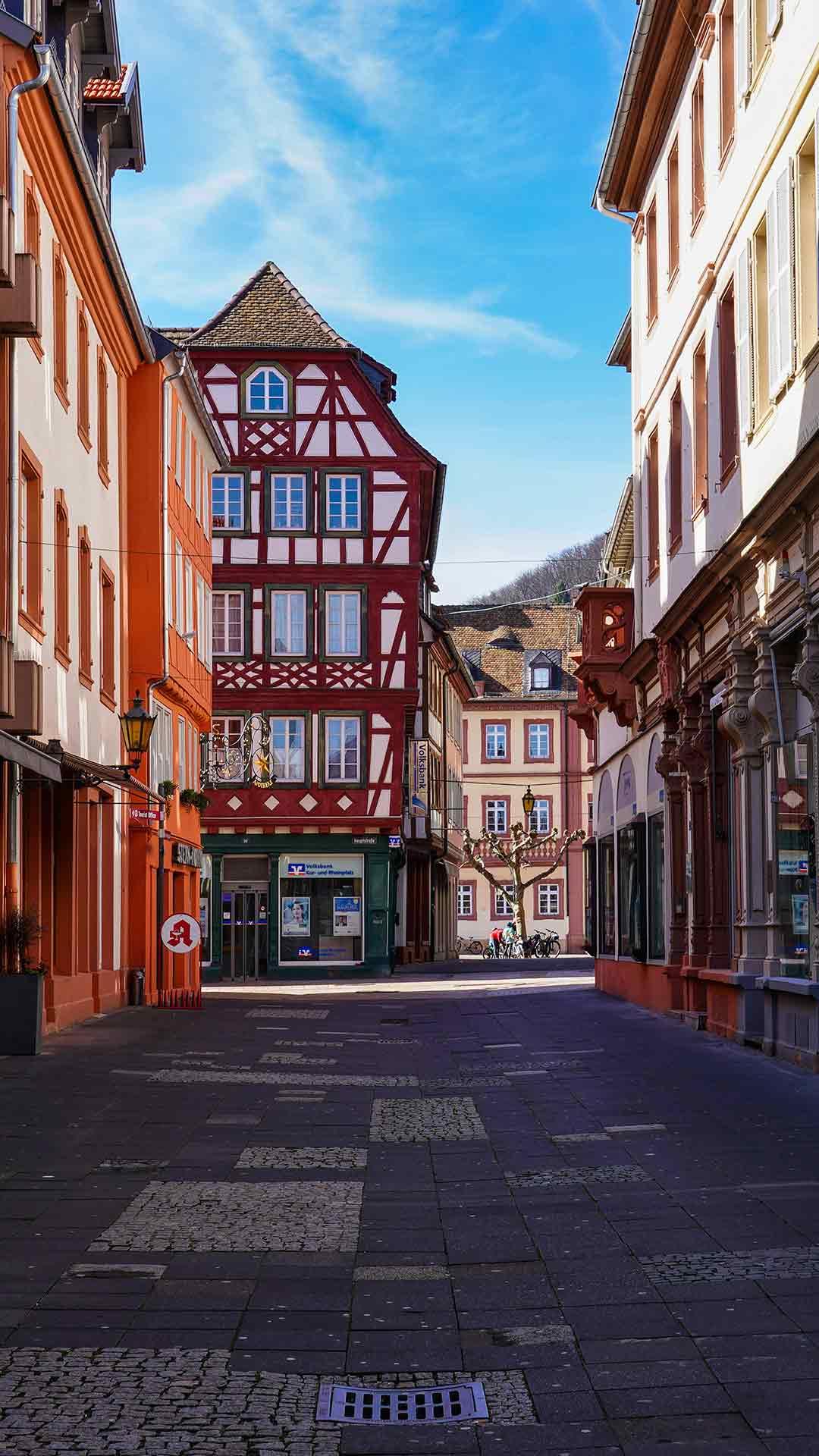 Heizkörperreinigung in Neustadt an der Weinstraße – unser patentiertes Verfahren