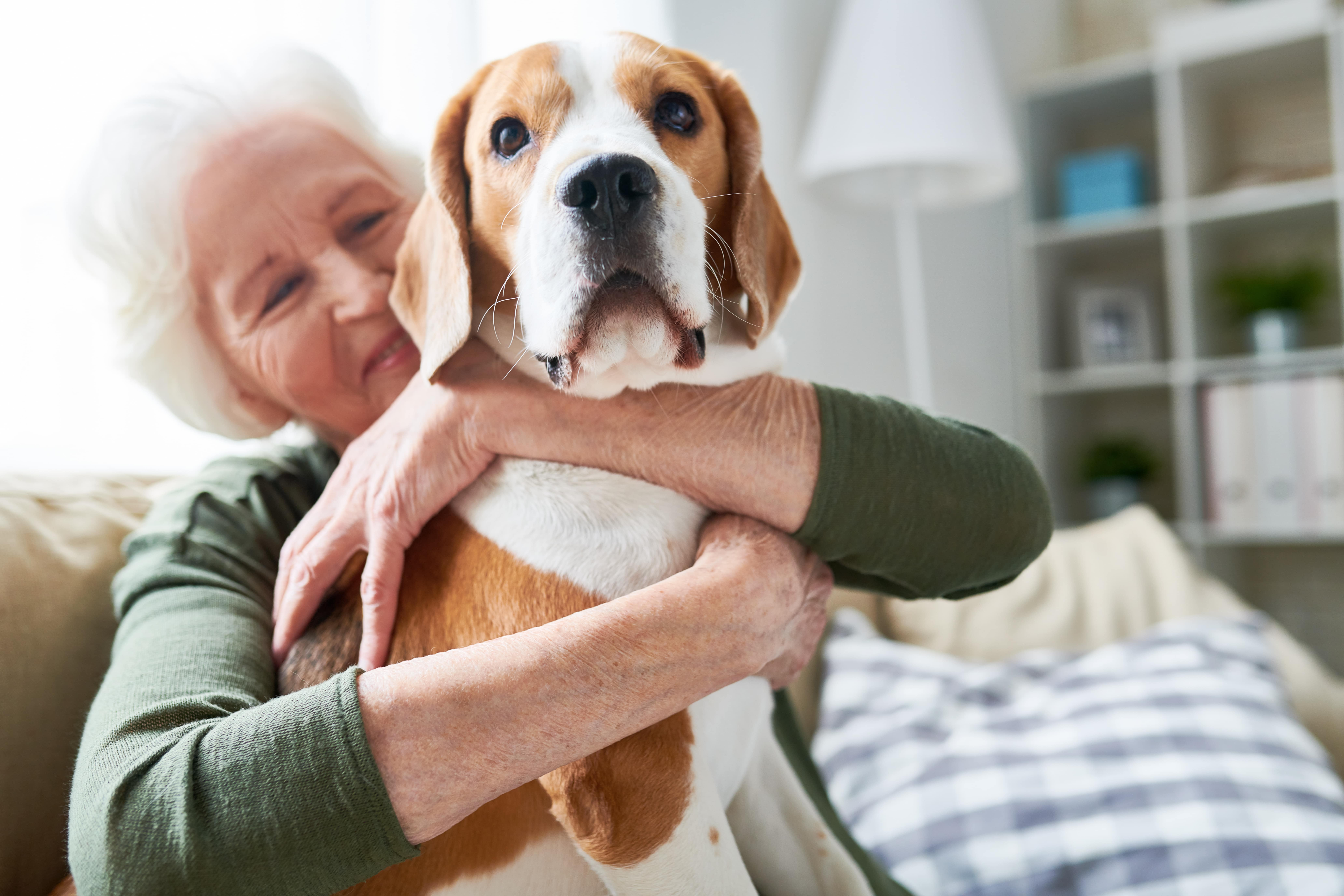 What to Know About Emotional Support Animals (ESAs) and How to Get Yours