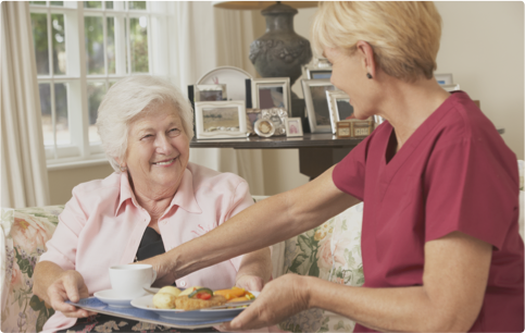 Carer serving meal