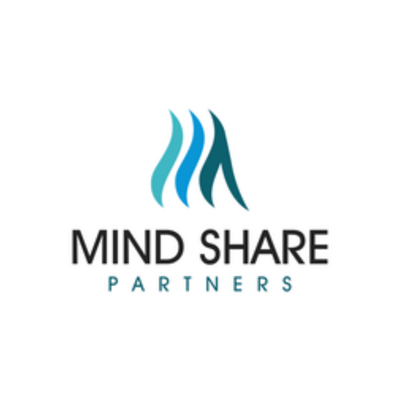 Mind Share Partners