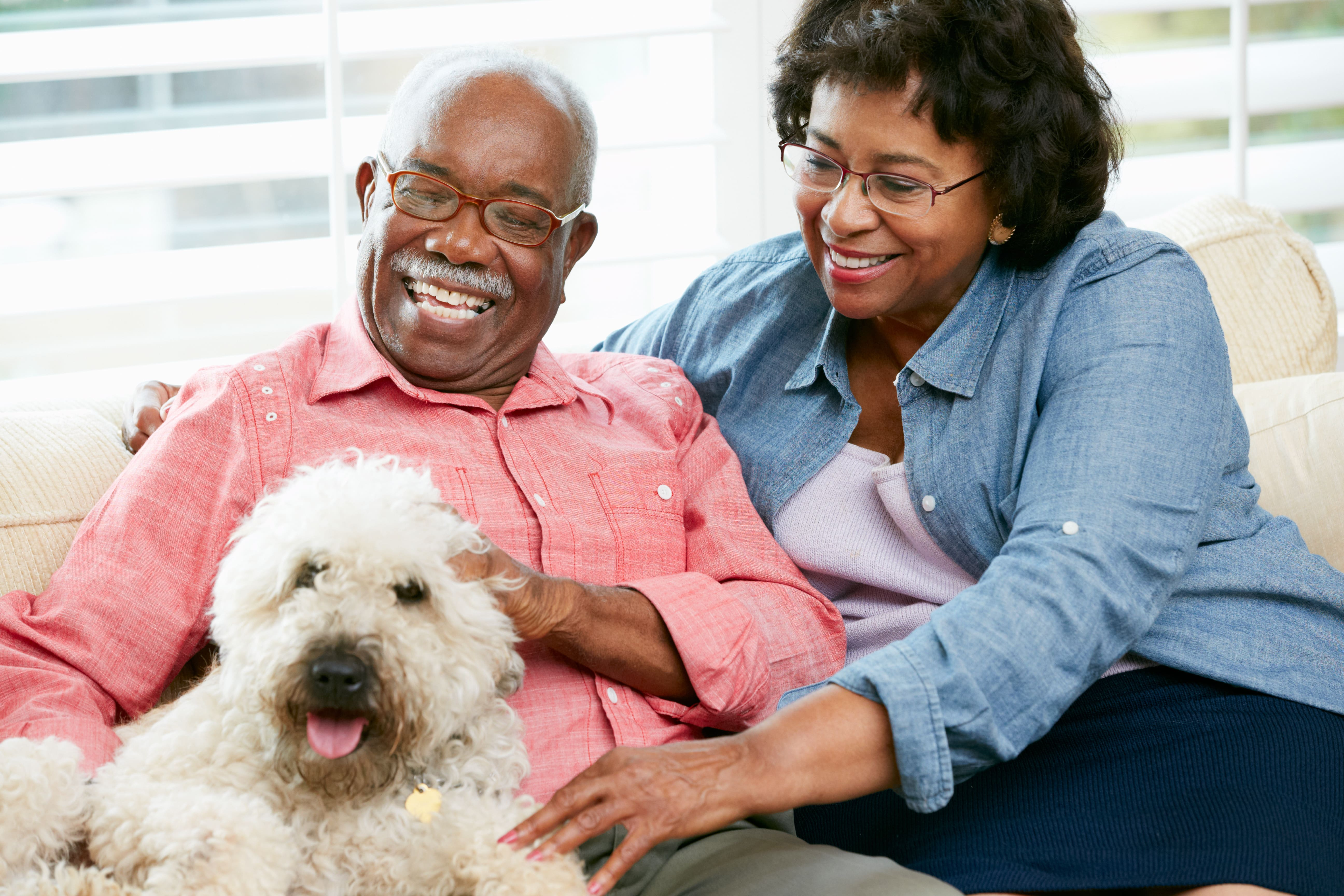 5 Benefits of Interacting with Animals for Seniors