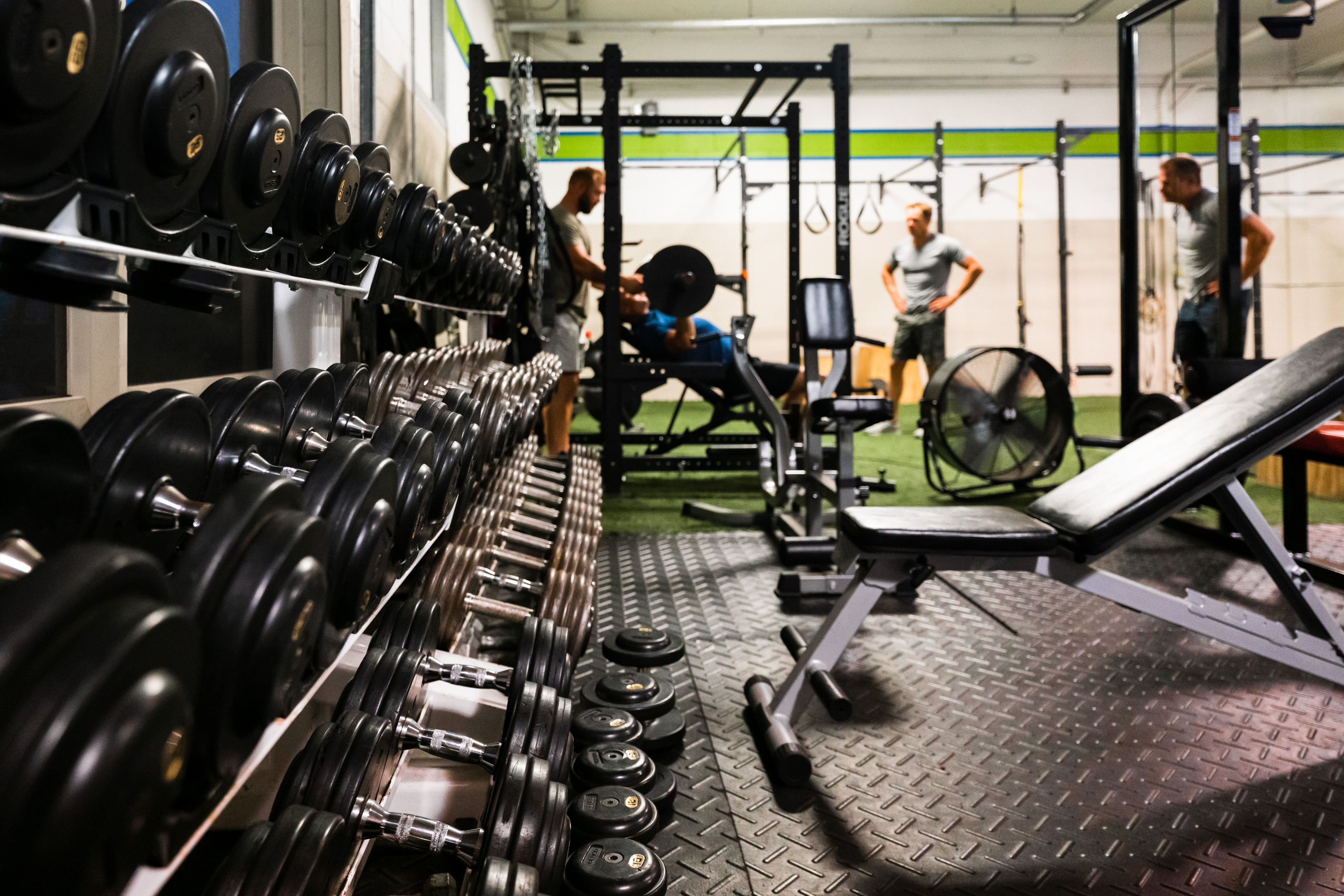 Free weights at Prevail Grand Rapids personal training and gym located in Ada, Michigan.