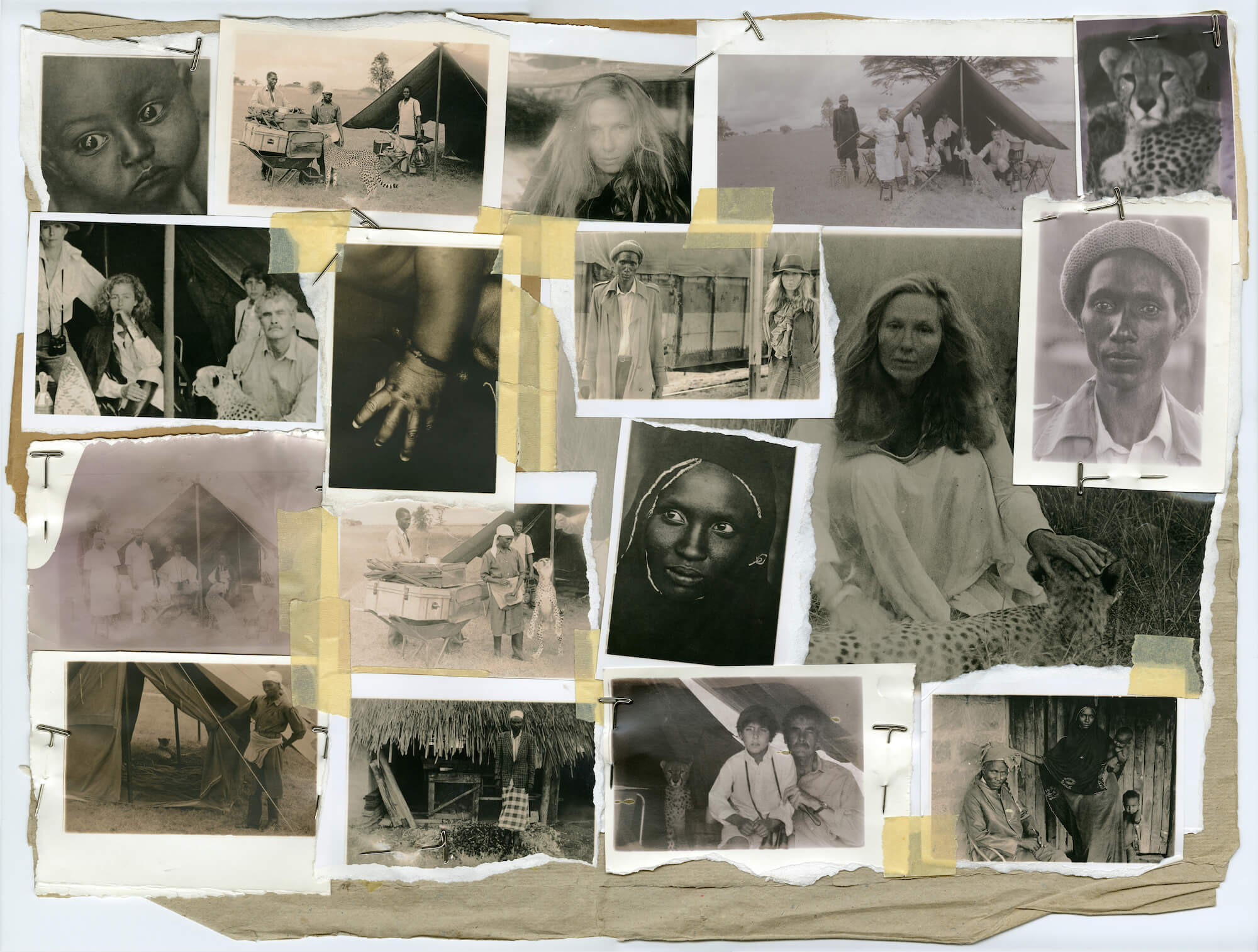Turbeville - Africa Collage