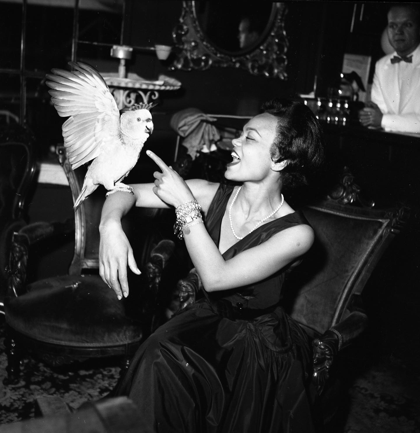 Eartha skirt, circa 1960 🕊  📷©️André de Dienes/MUUS Collection  #andrededienes #muuscollection #earthakitt #bird #cockatoo #parrot #petbird #musician #celebrity #photography #photo #photooftheday #picoftheday #musician #photographyarchive #archive #fromthearchives #onthisday #photographer #blackandwhite #blackandwhitephotography #1960 #portrait #flashphotography #vintage #vintageprint #silvergelatinprint #art #beautiful #nyc #newyorkcity