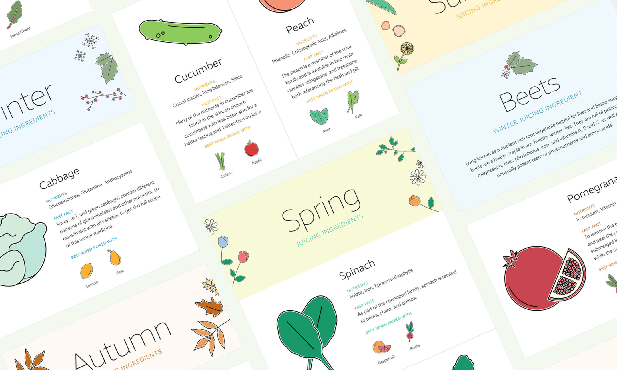 Infographics of the different recipes pages