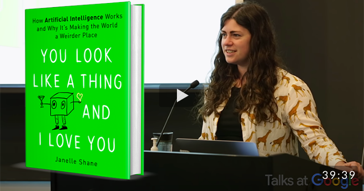 You Look Like a Thing and I Love You: How Artificial Intelligence Works and Why It's Making the World a Weirder Place (2019)